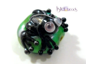broscuta neagra a