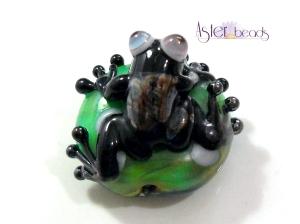 broscuta neagra b
